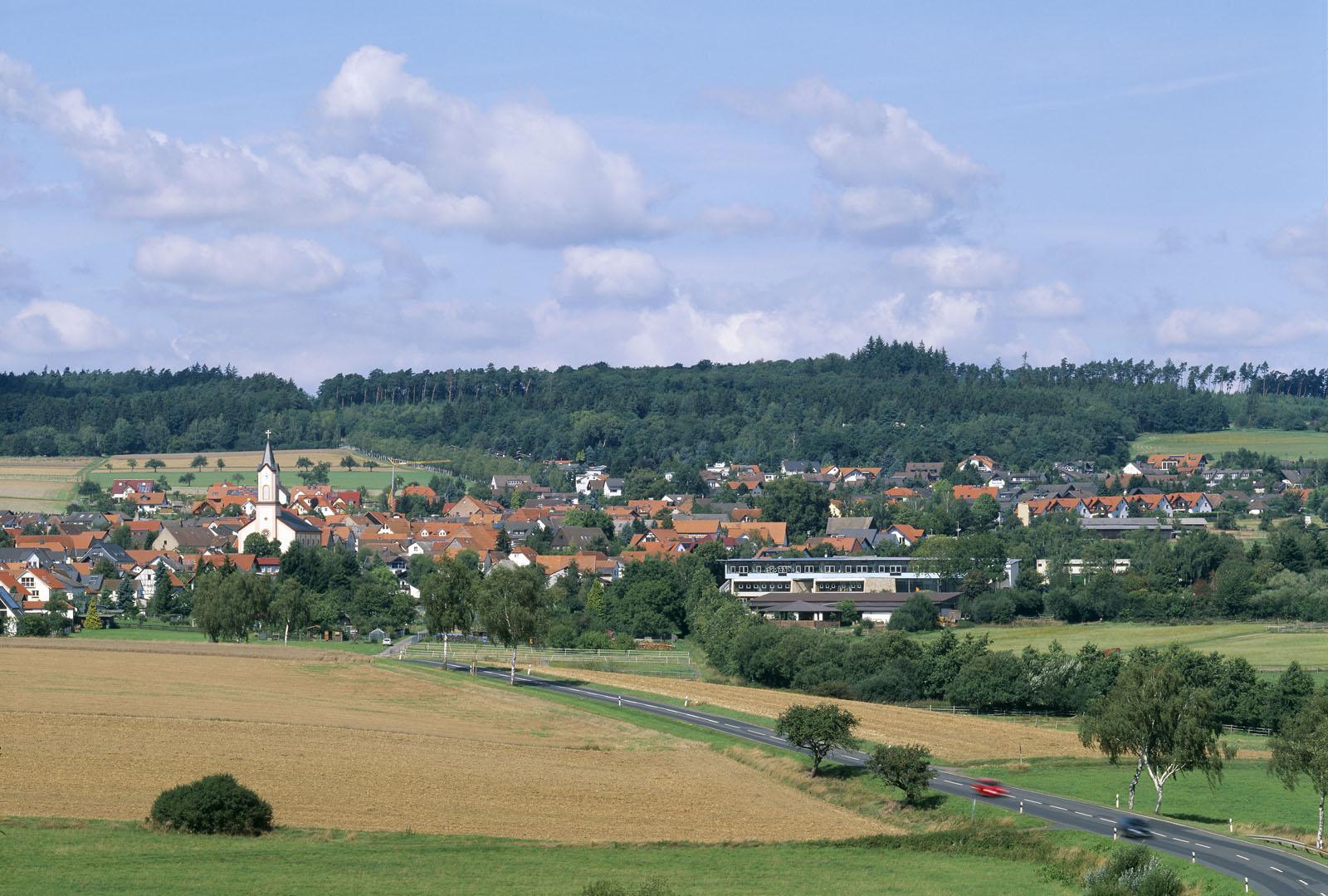 Buchfinken-Schule, Usingen